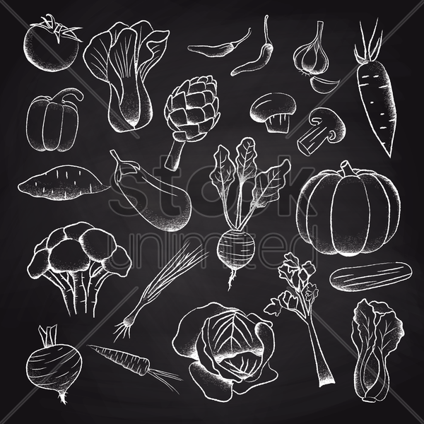 a collection of vegetables vector graphic