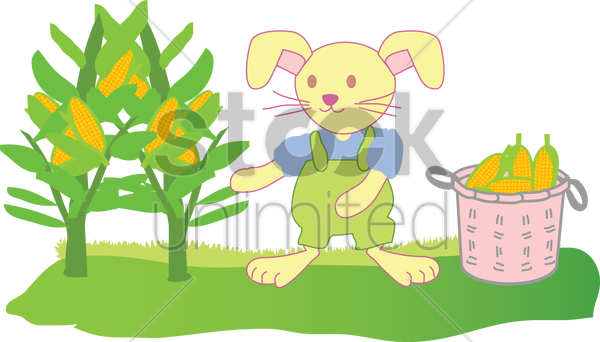 a rabbit harvesting corn vector graphic