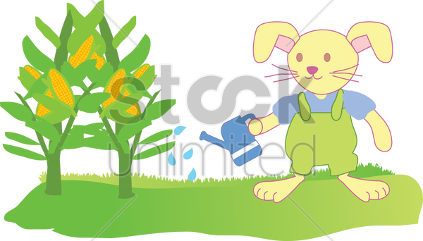a rabbit watering corn vector graphic
