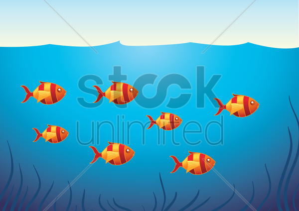 a school of fish vector graphic