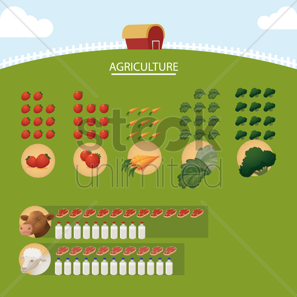 agriculture infographic vector graphic