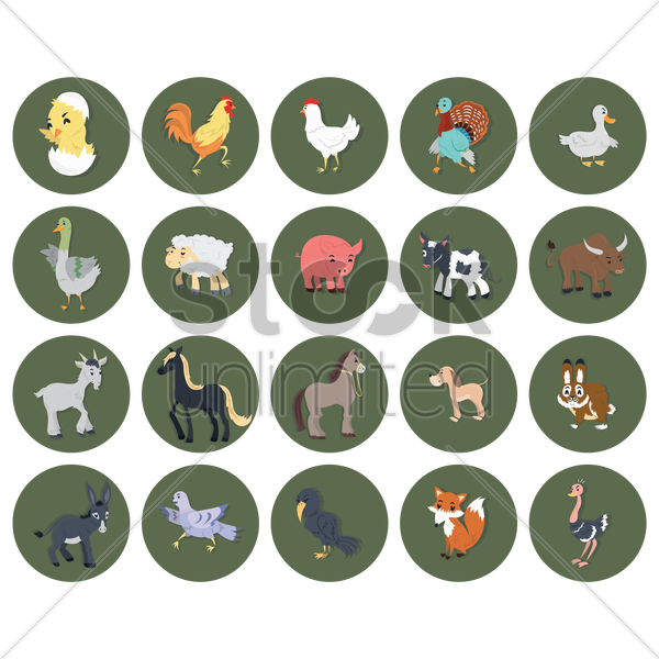 animal collection vector graphic