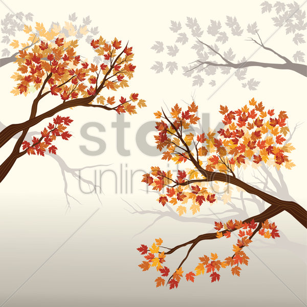 autumn tree leaves vector graphic