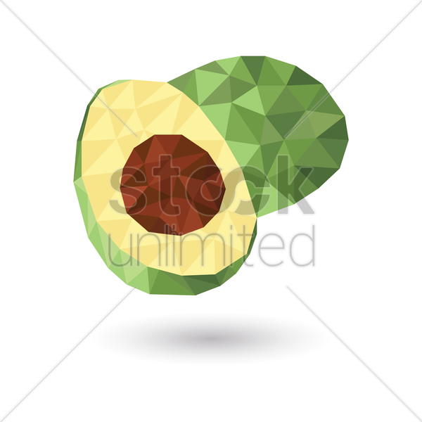 avocado vector graphic