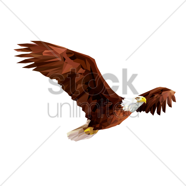 Free bald eagle vector graphic