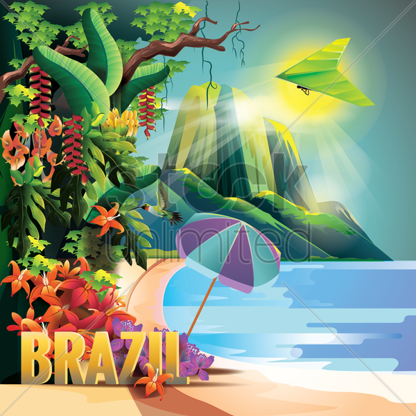 brazil vector graphic
