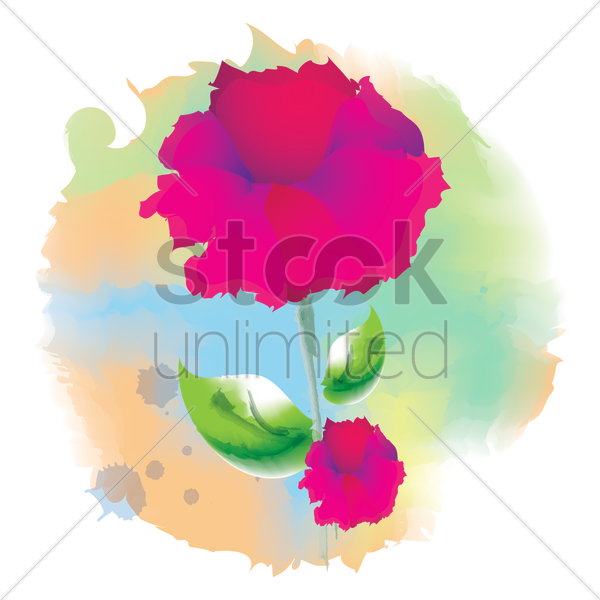 carnation flower vector graphic