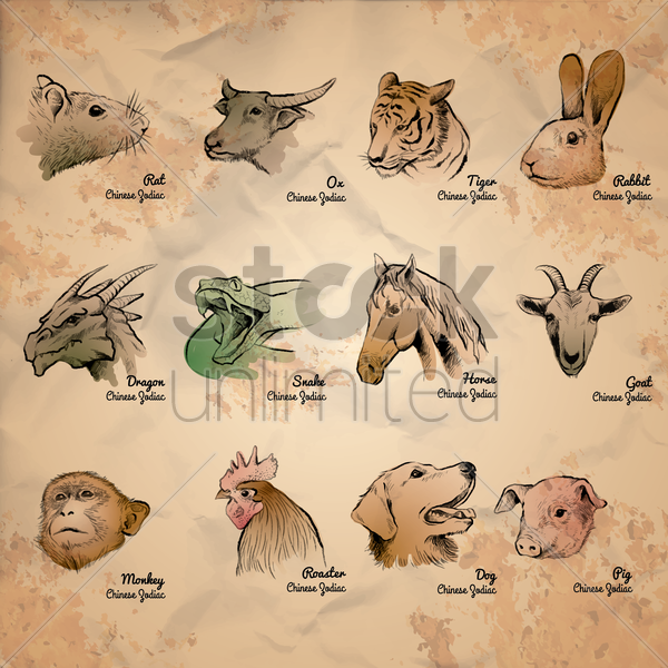 collection of chinese zodiac symbols vector graphic