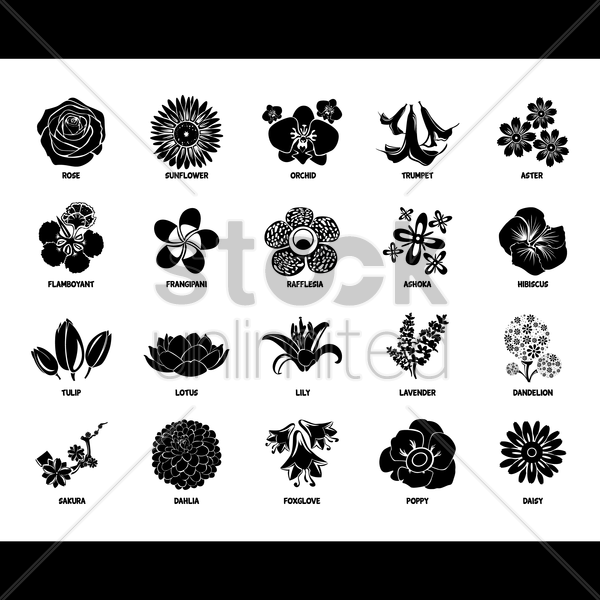 collection of flower icons vector graphic
