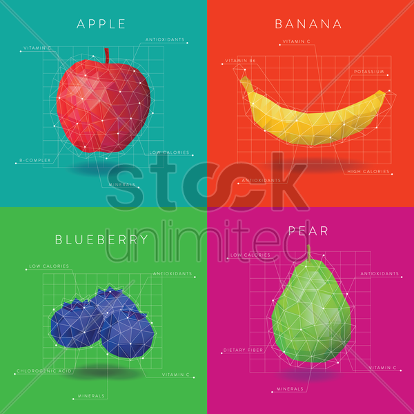 collection of fruit infographic vector graphic