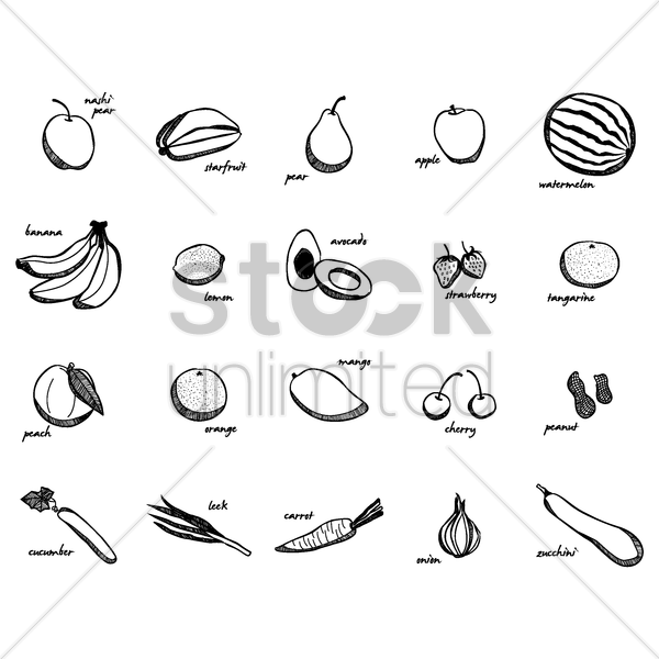 collection of fruits and vegetables vector graphic