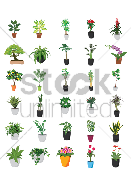 collection of potted plants vector graphic