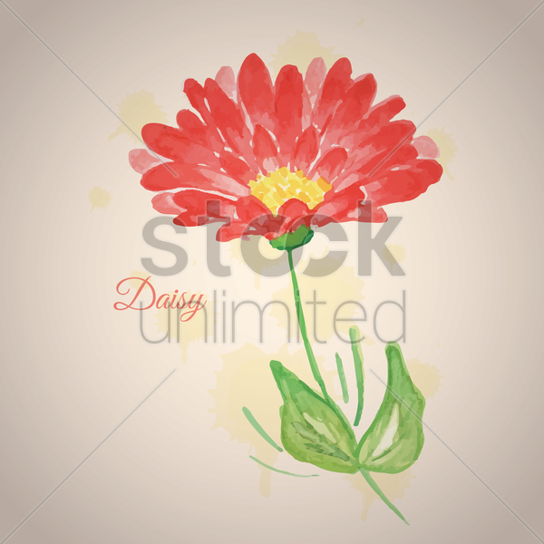daisy flower vector graphic