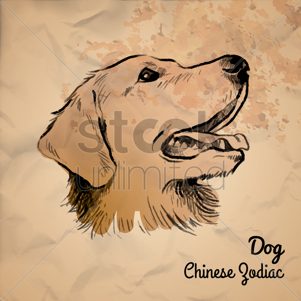 dog chinese zodiac vector graphic