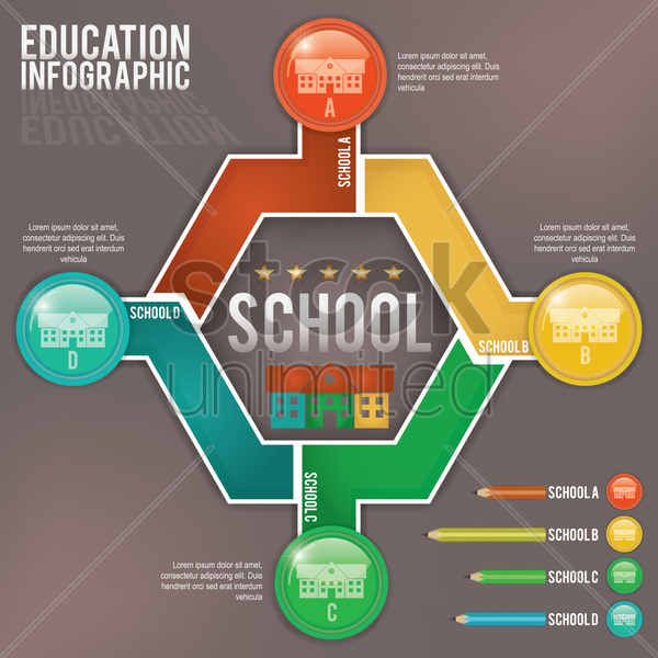 education infographic vector graphic