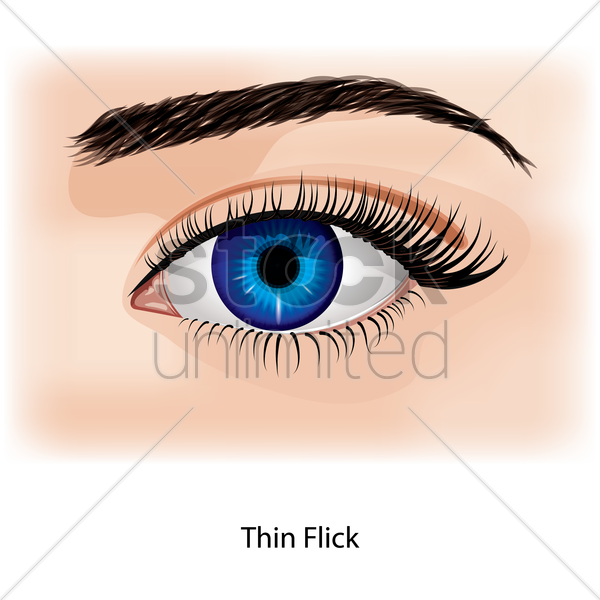 eye with thin flick vector graphic