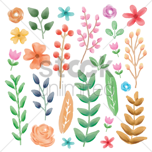 flowers and leaves vector graphic