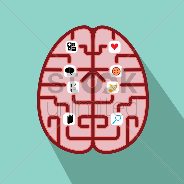 functions of brain vector graphic