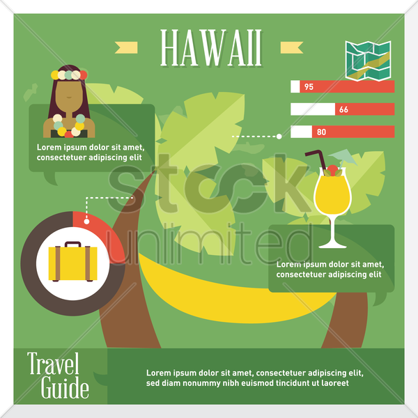 hawaii travel infographic vector graphic