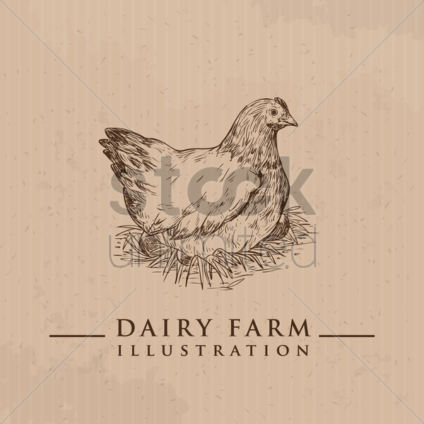 hen vector graphic