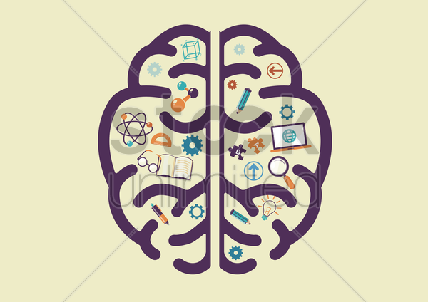 human brain with education concept vector graphic