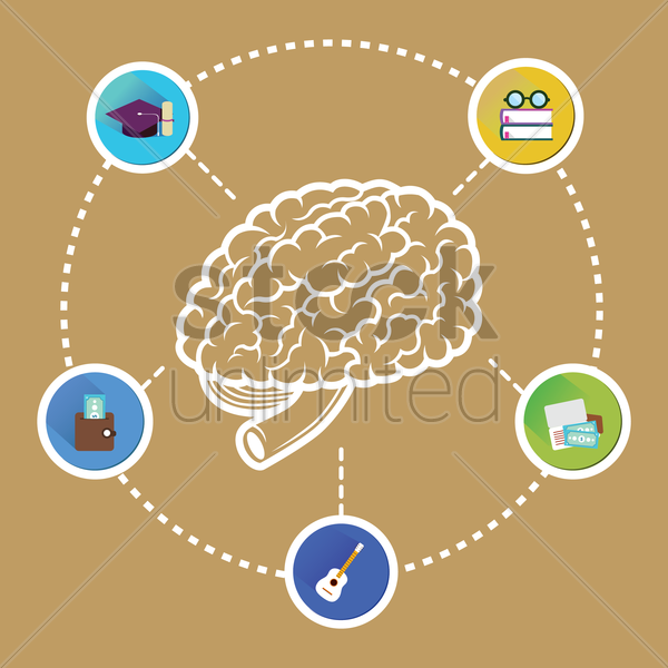 infographic of a human brain vector graphic