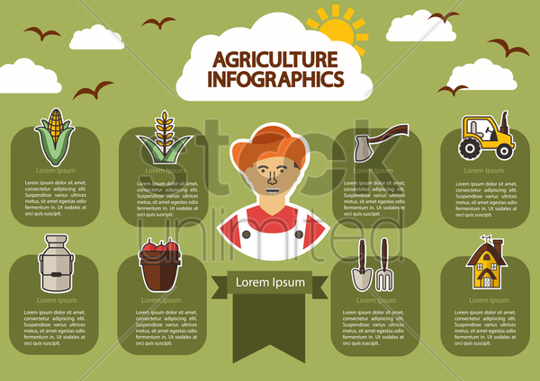 infographic of agriculture vector graphic