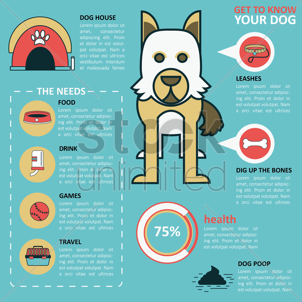 infographic of dog health vector graphic