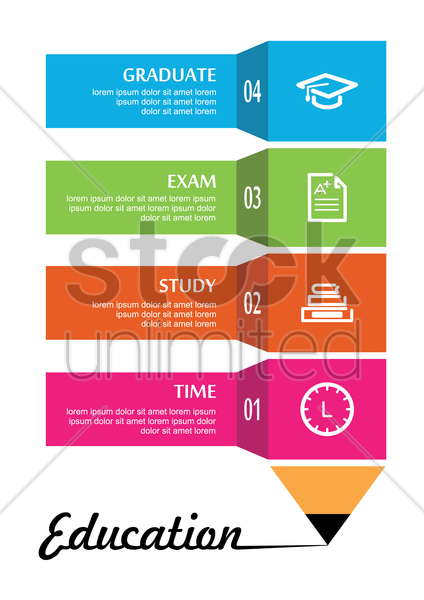 infographic of education plan vector graphic