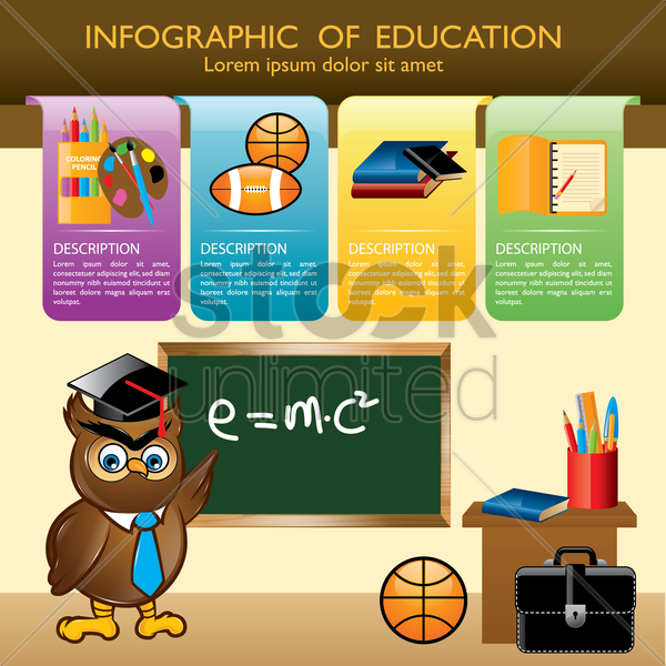 infographic of education vector graphic