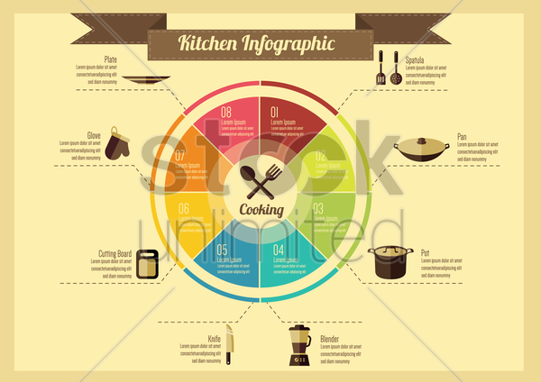 infographic of kitchen vector graphic