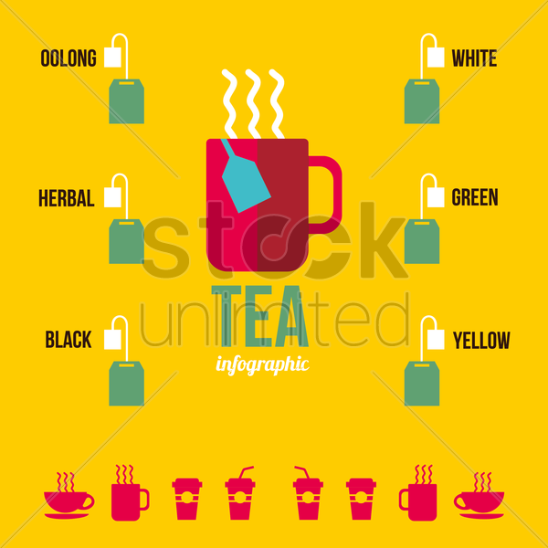 infographic of tea vector graphic