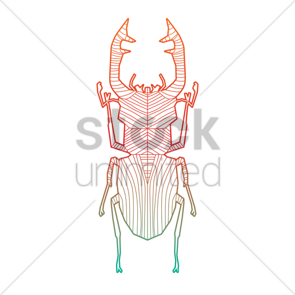 intricate beetle design vector graphic