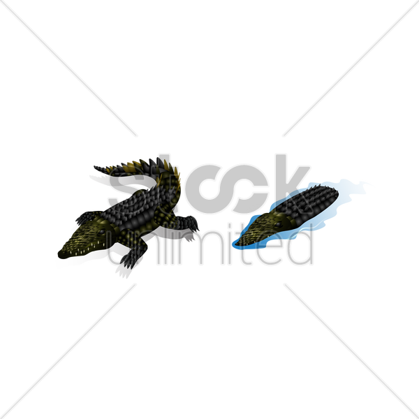 isometric crocodiles vector graphic