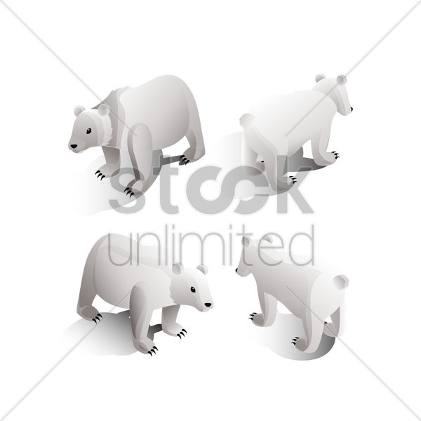 isometric polar bears vector graphic