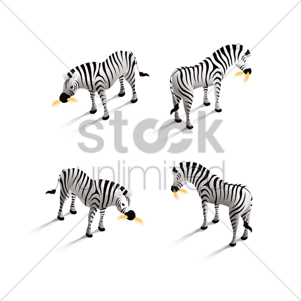 isometric zebra vector graphic