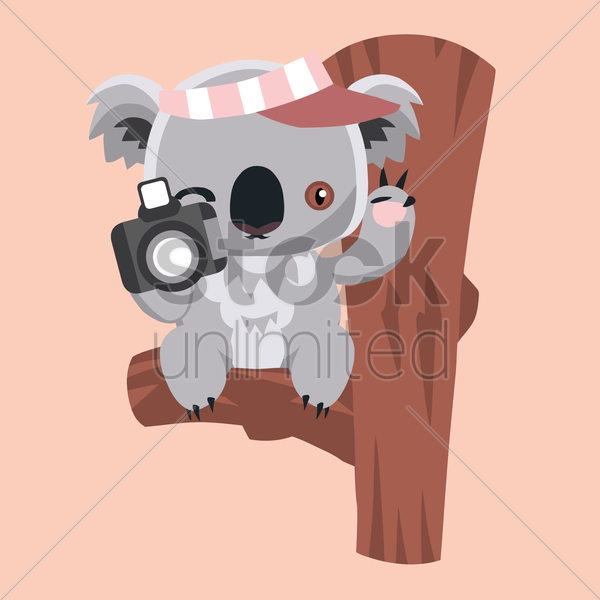 Free koala bear holding a camera vector graphic