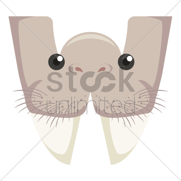 Free letter w for walrus vector graphic