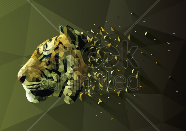 low poly of tiger vector graphic