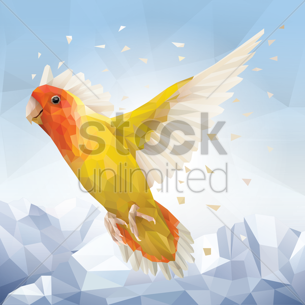 parrot vector graphic