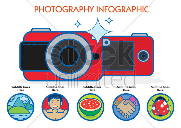 photography infographic vector graphic