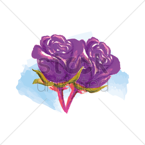 purple roses vector graphic