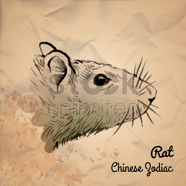 rat chinese zodiac vector graphic