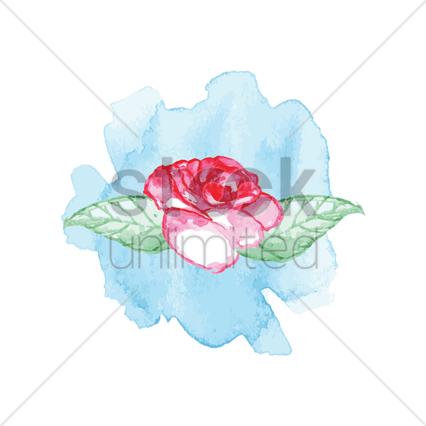 rose vector graphic
