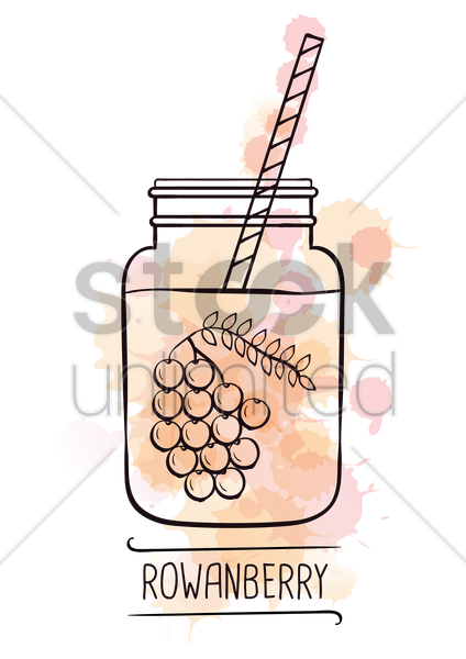rowanberry smoothie vector graphic