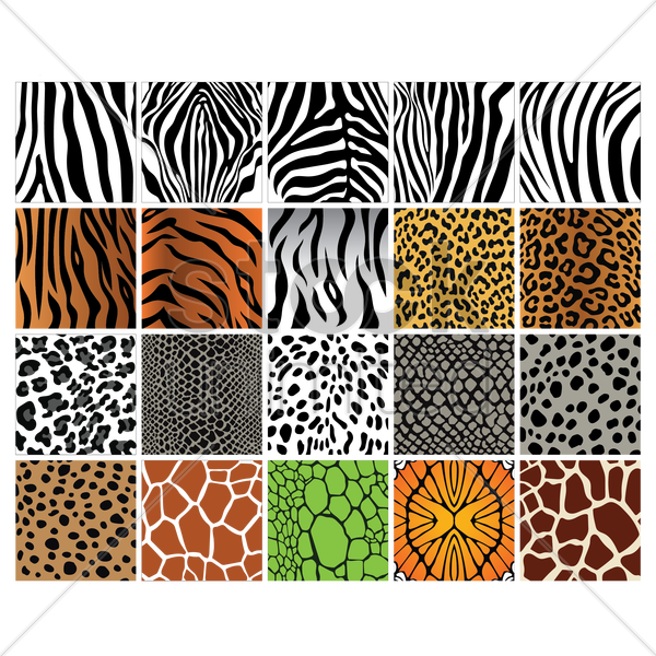 set of animal print backgrounds vector graphic