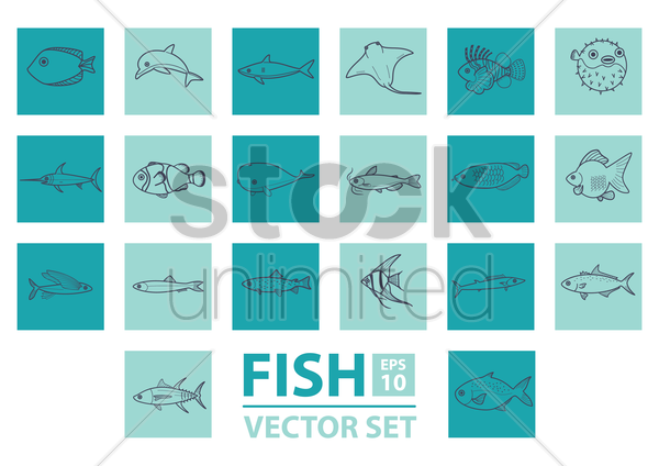 set of fishes vector graphic