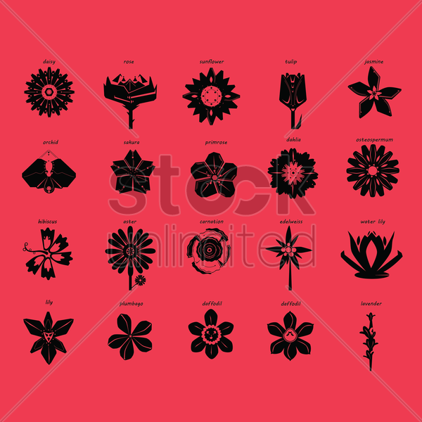 set of flower icons vector graphic