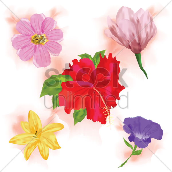 Free set of flowers vector graphic
