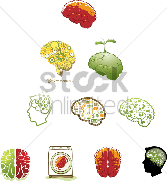 set of human brains vector graphic